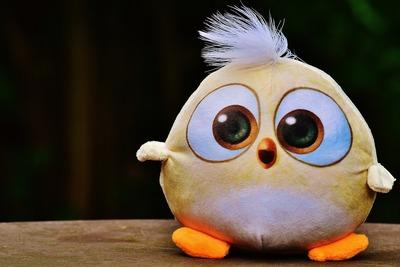 免费照片: 鸟, 小鸟, 毛绒, 毛绒动物, 玩具, 可爱,